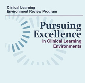 Pursuing Excellence Initiative